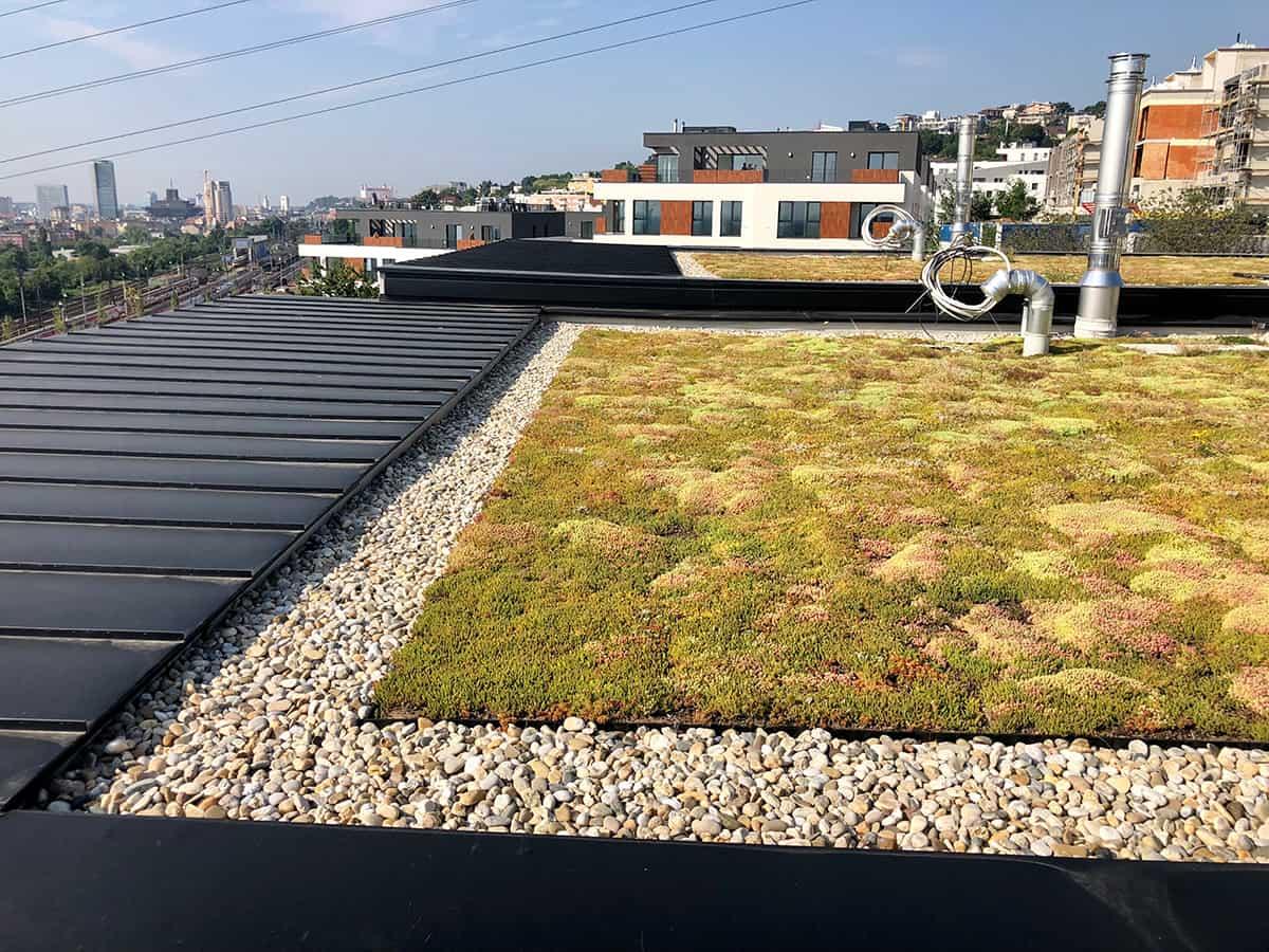 Prečo zelená strecha?