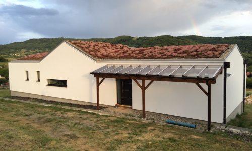 šikmá extenzívna zelená strecha, rozkvitnutá na ružovo