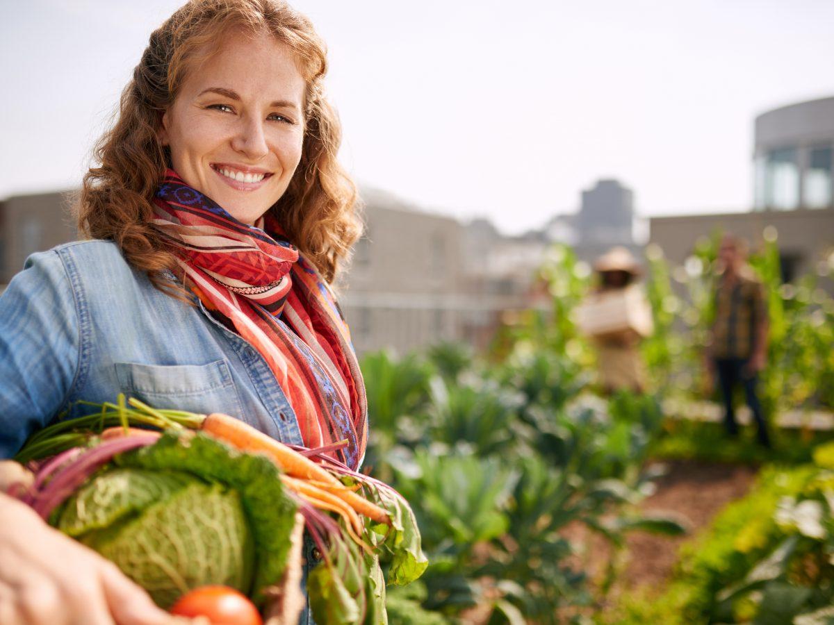 Pestovanie zeleniny na streche